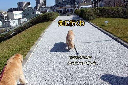 s-IMG_9031.jpg