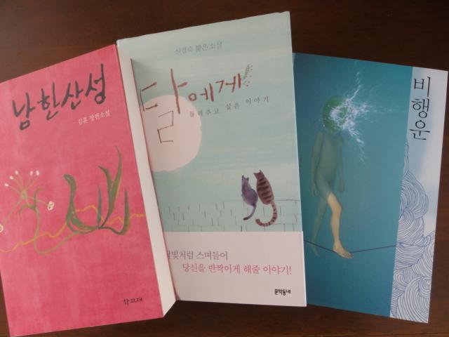 2014年11月27日撮影 韓国で読んだ本 小説