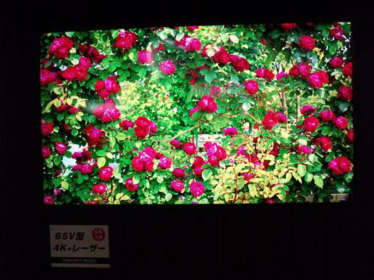 DSCF8421_530X398.jpg