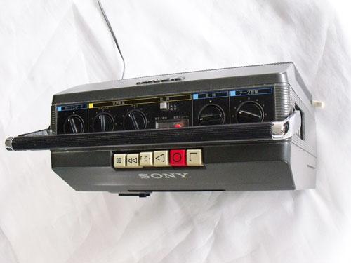 DSCF8528500X375.jpg