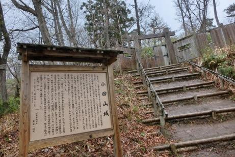 戦国時代、蒲生氏の城があった小田山 市街の見晴しは最高。城もよく見えます