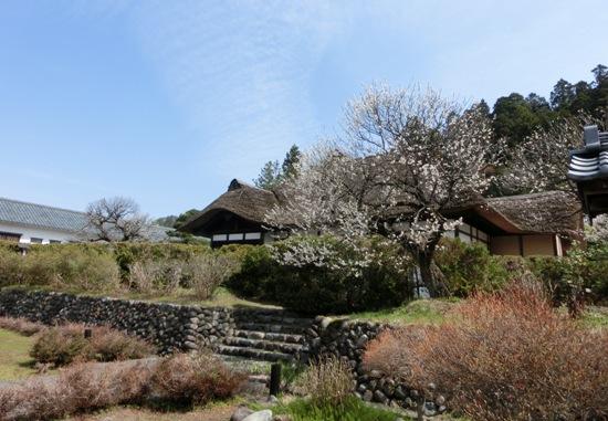 会津武家屋敷 名家老西郷頼母さんのお屋敷を模したという(東山のふもとにあります)