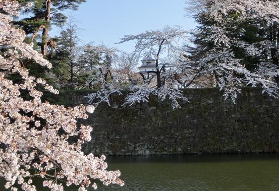 逆側(西軍側)から臨んだ鶴ヶ城 だが正面には銃を構えた八重たち精鋭部隊が待ち受けていた