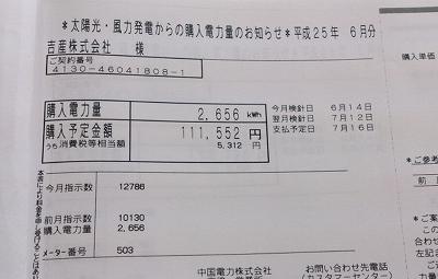 IMG_20130614_152312.jpg
