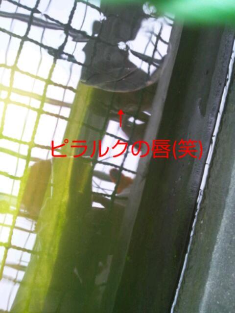 20130917_185528.jpg