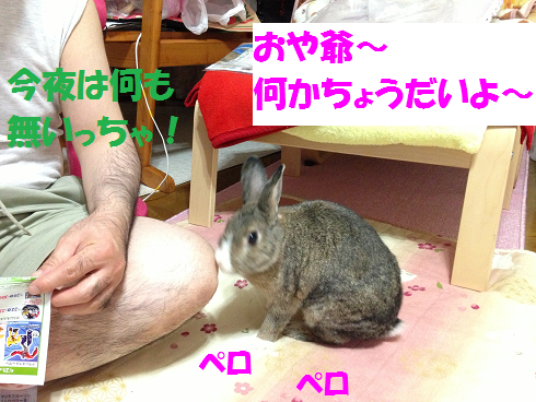 IMG_0281おねだり
