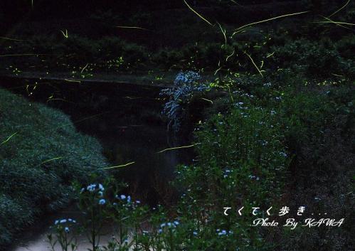 2一の瀬橋13.06.02