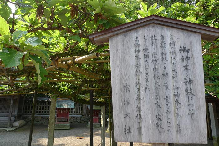 福岡県 宗像大社 18