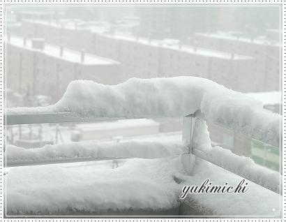 雪降ったよ~☆