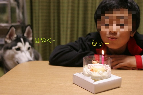 IMG_3864(1).jpg