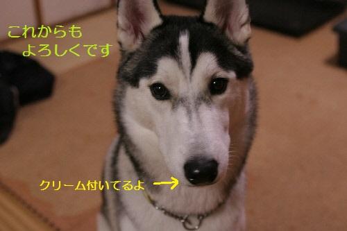 IMG_3874(1).jpg