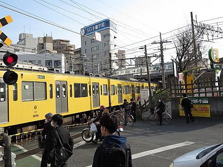 honkawagoe05.jpg