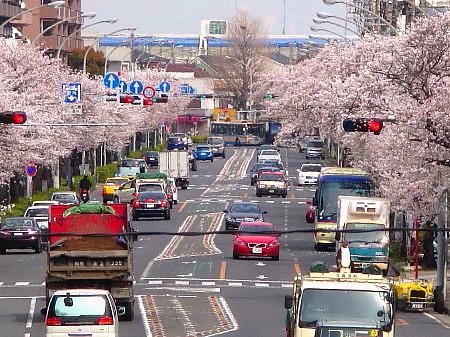 honmokudori04.jpg