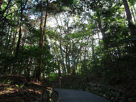 tukiyomi12.jpg