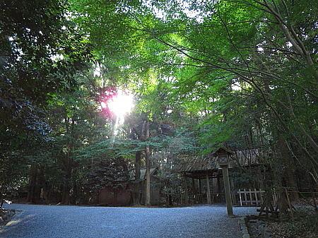 tukiyomi17.jpg