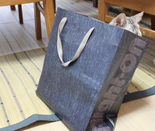 袋にIN2