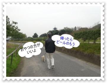 DSC01702_20131103002303bf8.jpg