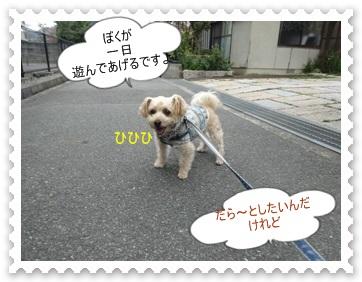 DSC01741.jpg