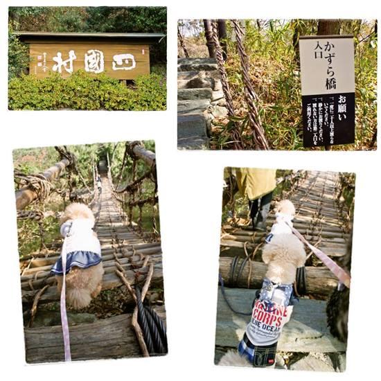 お正月旅行香川2