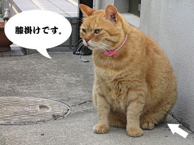 13_05_30_3.jpg