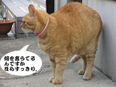 13_05_30_4.jpg