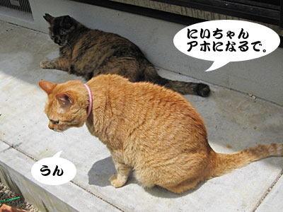 13_06_02_8.jpg
