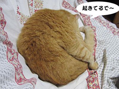 13_07_01_4.jpg