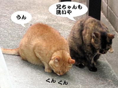 13_07_03_2.jpg