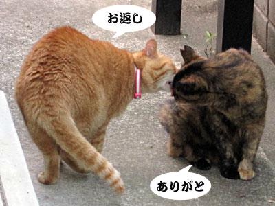 13_07_03_5.jpg