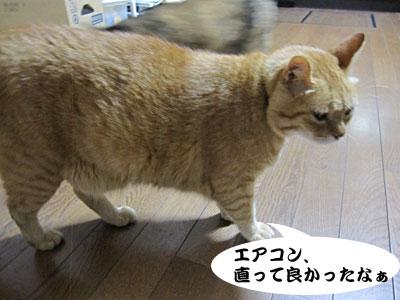 13_07_18_5.jpg