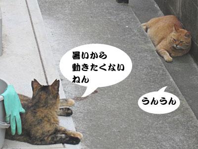 13_07_22_2.jpg