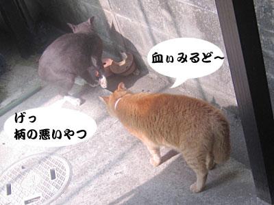 13_07_26_1.jpg