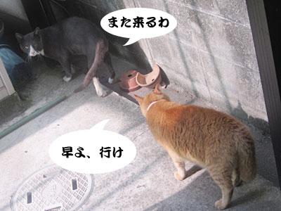13_07_26_2.jpg