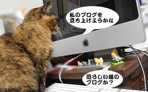 14_11_19_2.jpg