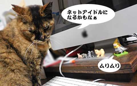 14_11_19_3.jpg