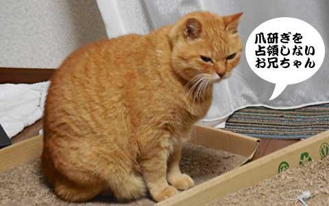 14_11_23_3.jpg