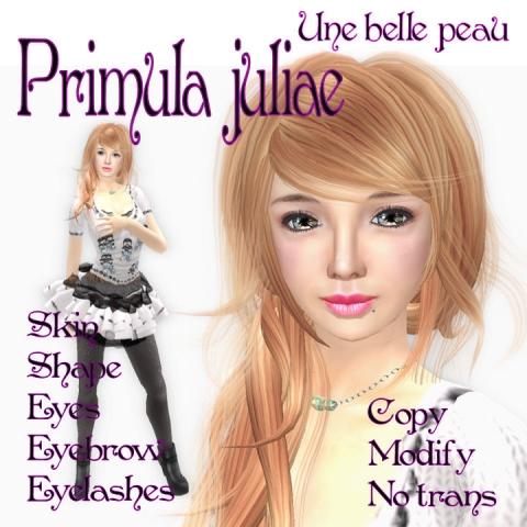 Primula Juliae _panel 480