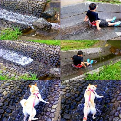 PicsArt_1374121280183.jpg