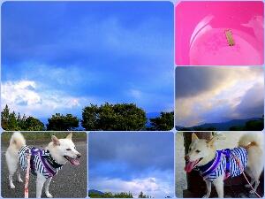 PicsArt_1376146776375.jpg