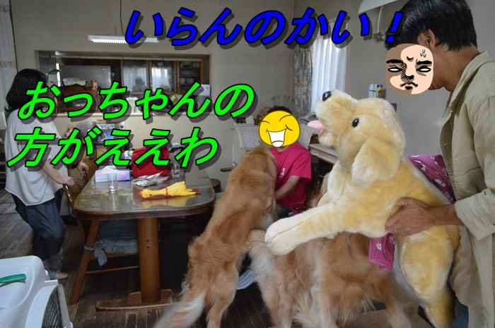 DSC_0133_20130909210032224.jpg