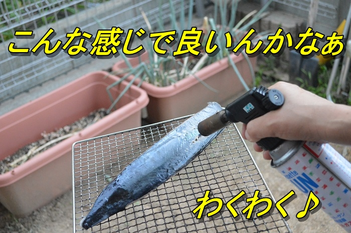 DSC_0148_20130725165131.jpg