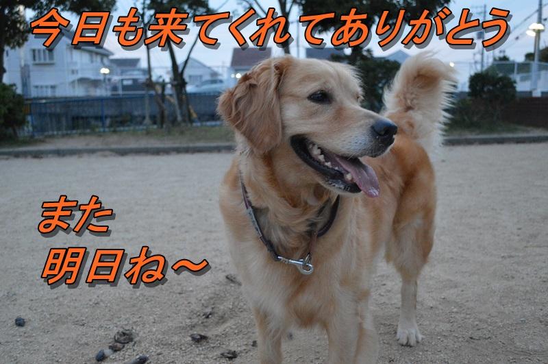 DSC_0478_20130801215038a74.jpg