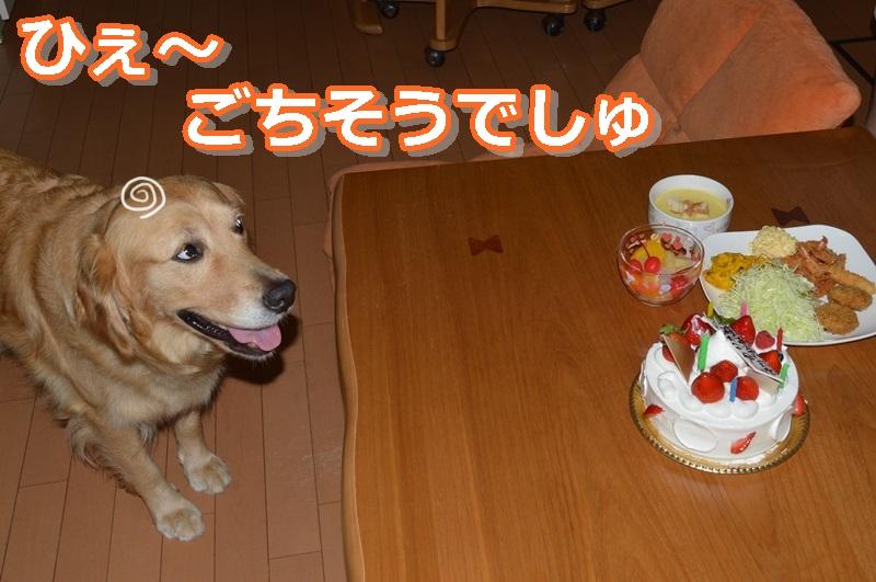 DSC_0794-040.jpg