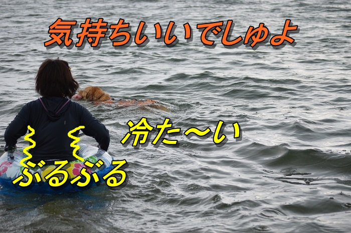 DSC_0833_20130716225339.jpg