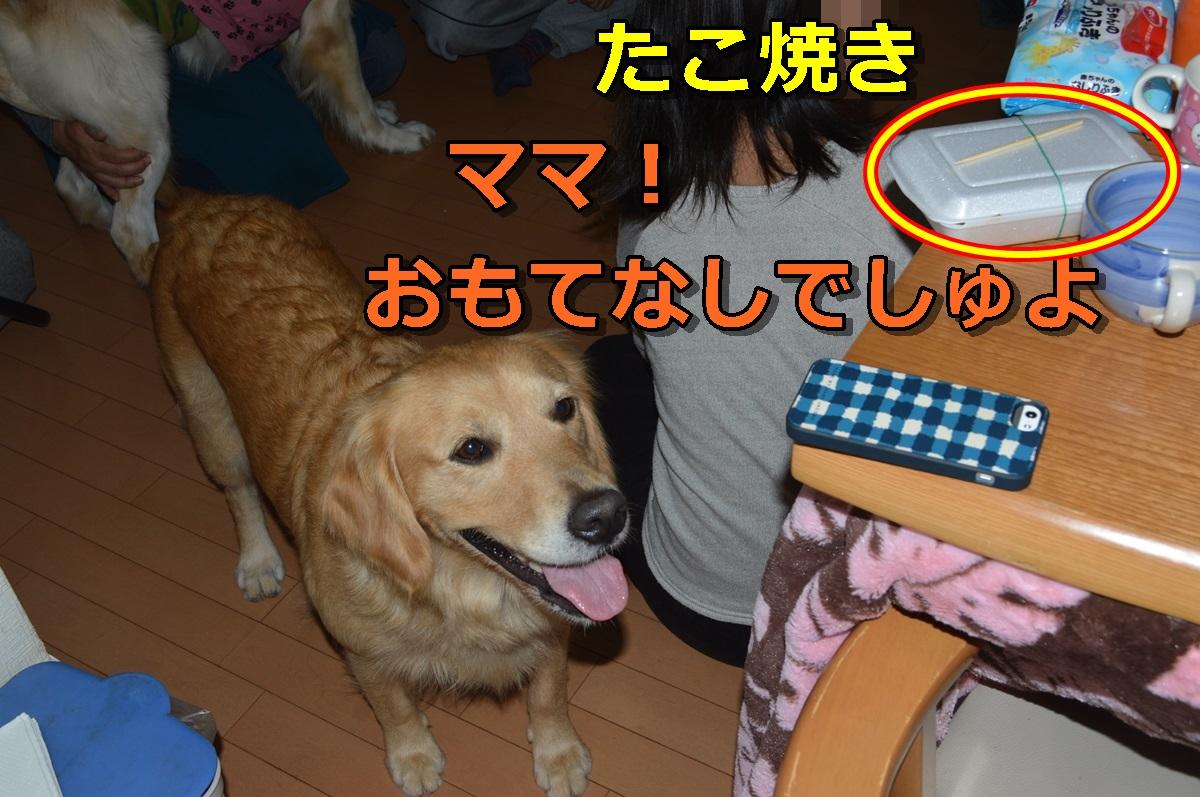 DSC_1024-008.jpg