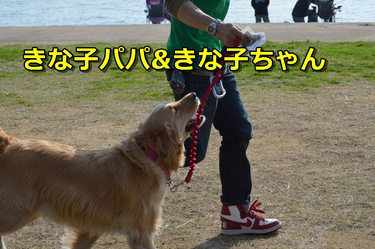 DSC_1058-022.jpg