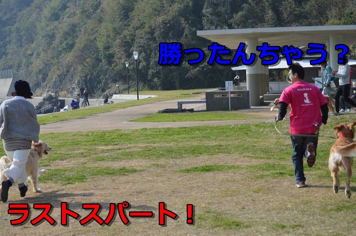 DSC_1162-045.jpg