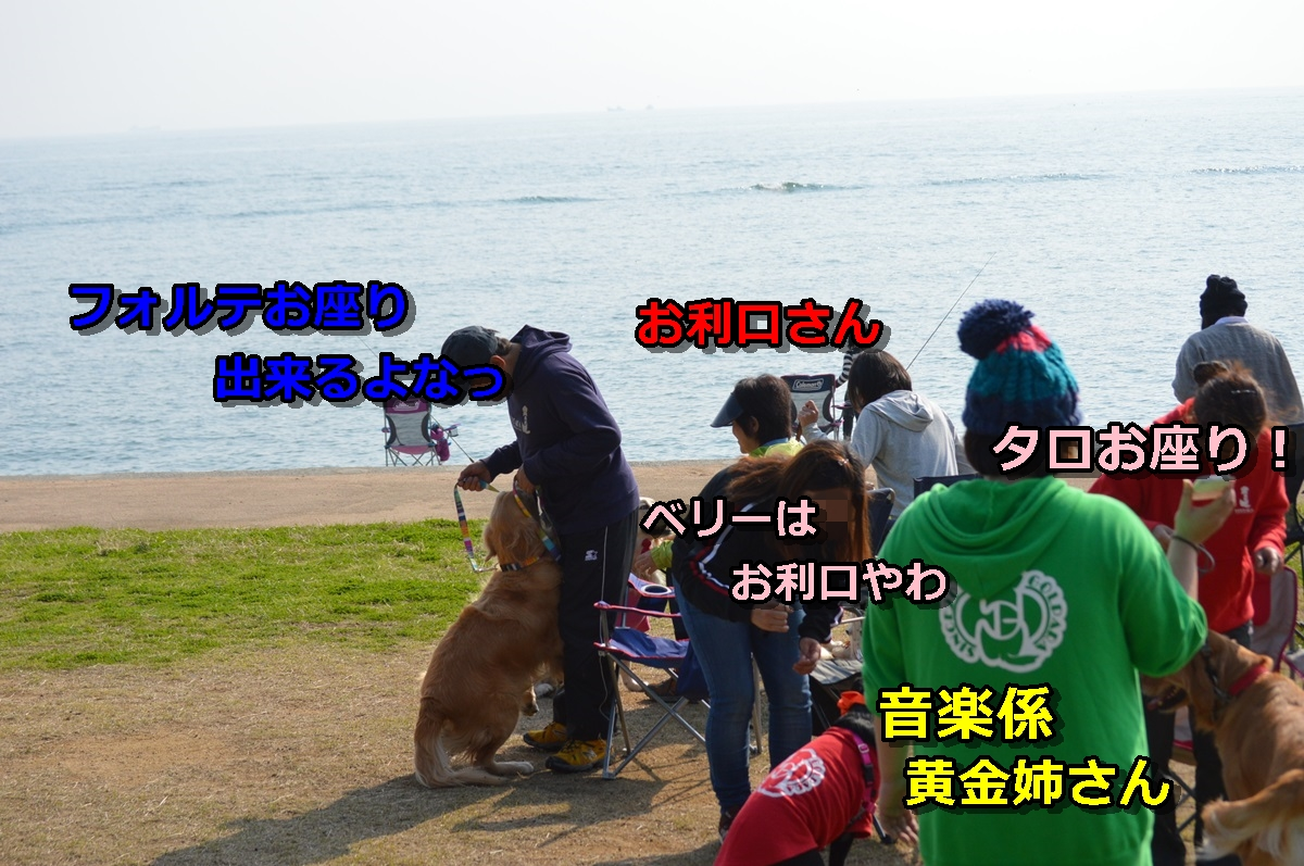 DSC_1179-008.jpg