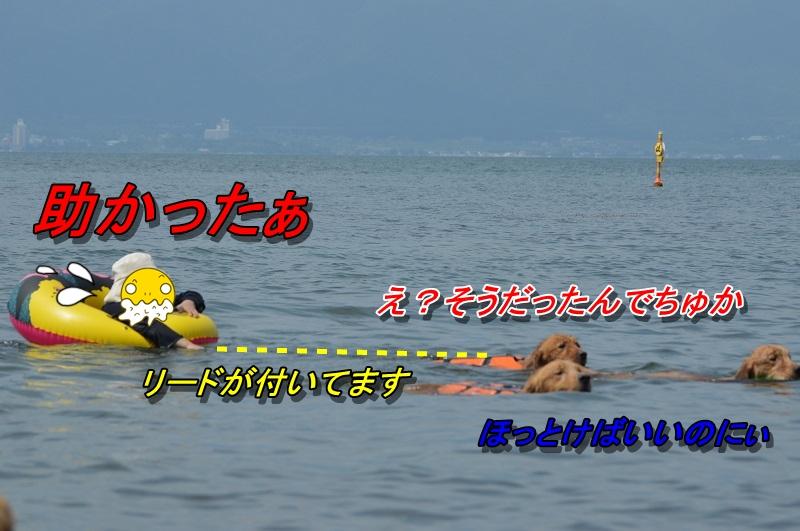 DSC_1186.jpg