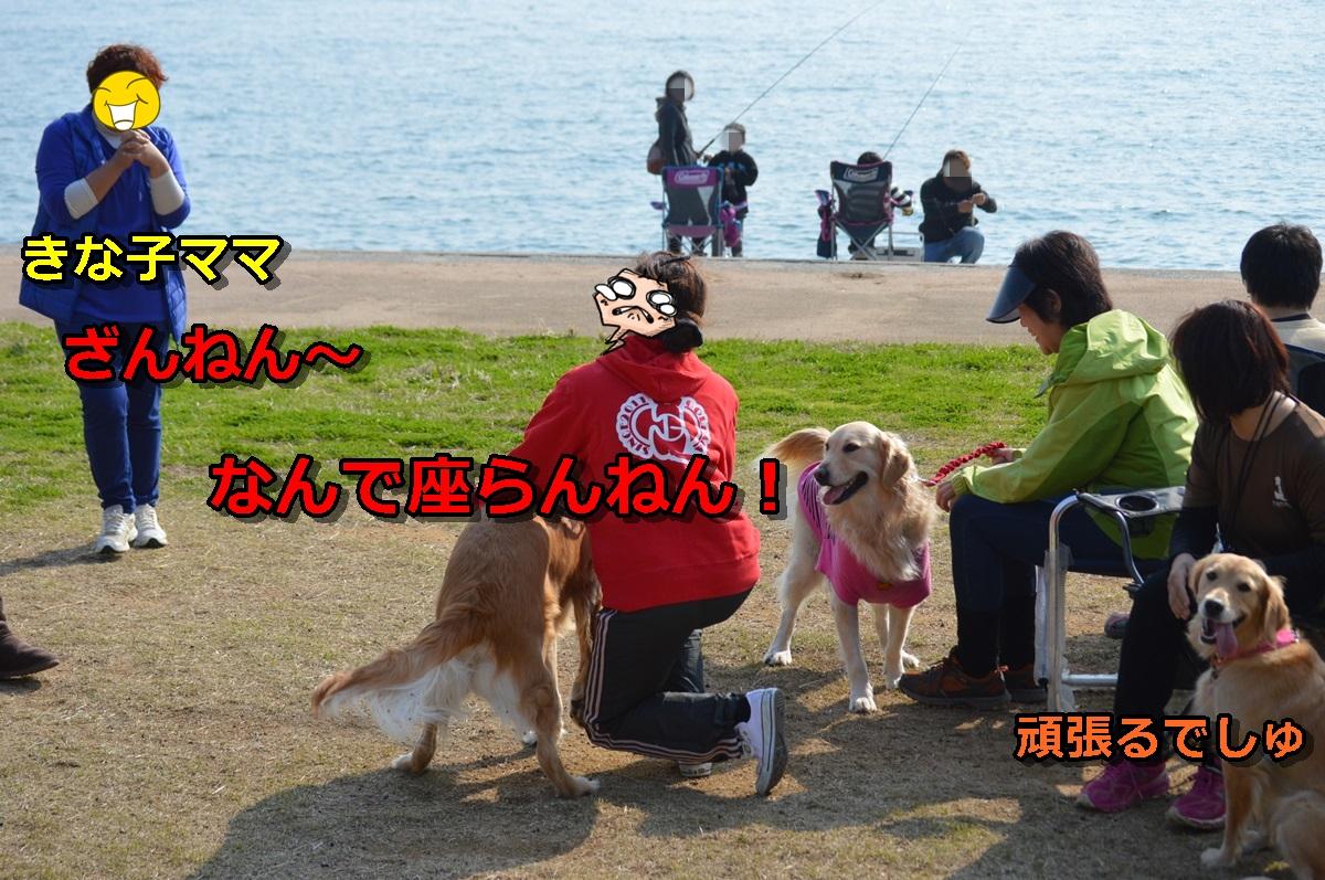 DSC_1191-020.jpg